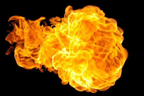 Fireball Virus